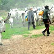 Attack By Suspected Herdsmen Have Been Going On In Yewa For The Past 3Weeks, See What They Did Again Yesterday