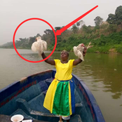 Reactions As Woman Was Seen Throwing Drinks, Bread And Chickens Into The River