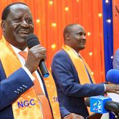 How ODM Plans to Reap Big from Presidential Flag Bearer Applications