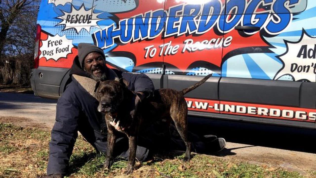 Homeless Man Saves All Animals At A Burning Shelter - Opera News