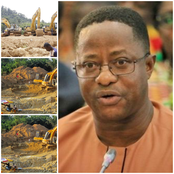 I didn't seize any excavator from the mining site - Peter Amewu replies NDC's at the vetting.