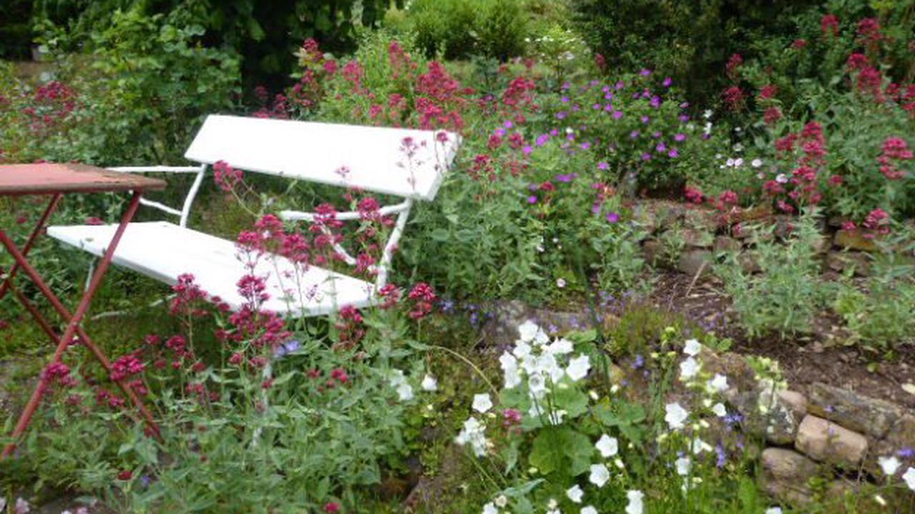 Einladung zum offenen Garten