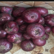 Farmers Are losing money- See the N70 onions a man bought In Gombe state that got people talking