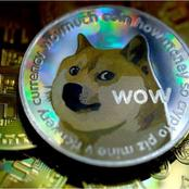 Facts About Dogecoin, A Cryptocurrency That Is Moving Rapidly