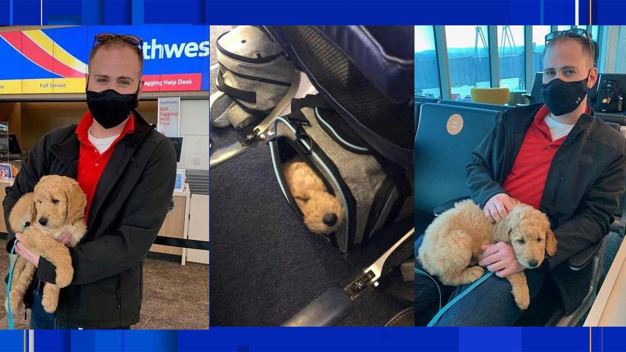 Southwest Airlines dispatcher travels over 3,000 miles to help deliver puppy for Christmas