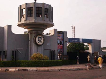 Pornhub chooses University of Ibadan as its African headquarters.
