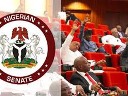 The Nigerian Senate Approves the Establishment of Solid Minerals Agency Checkout the Details