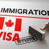 IMMIGRATE TO CANADA : Several Awesome Job Opportunities/Pathway to Permanent Residence in 2020