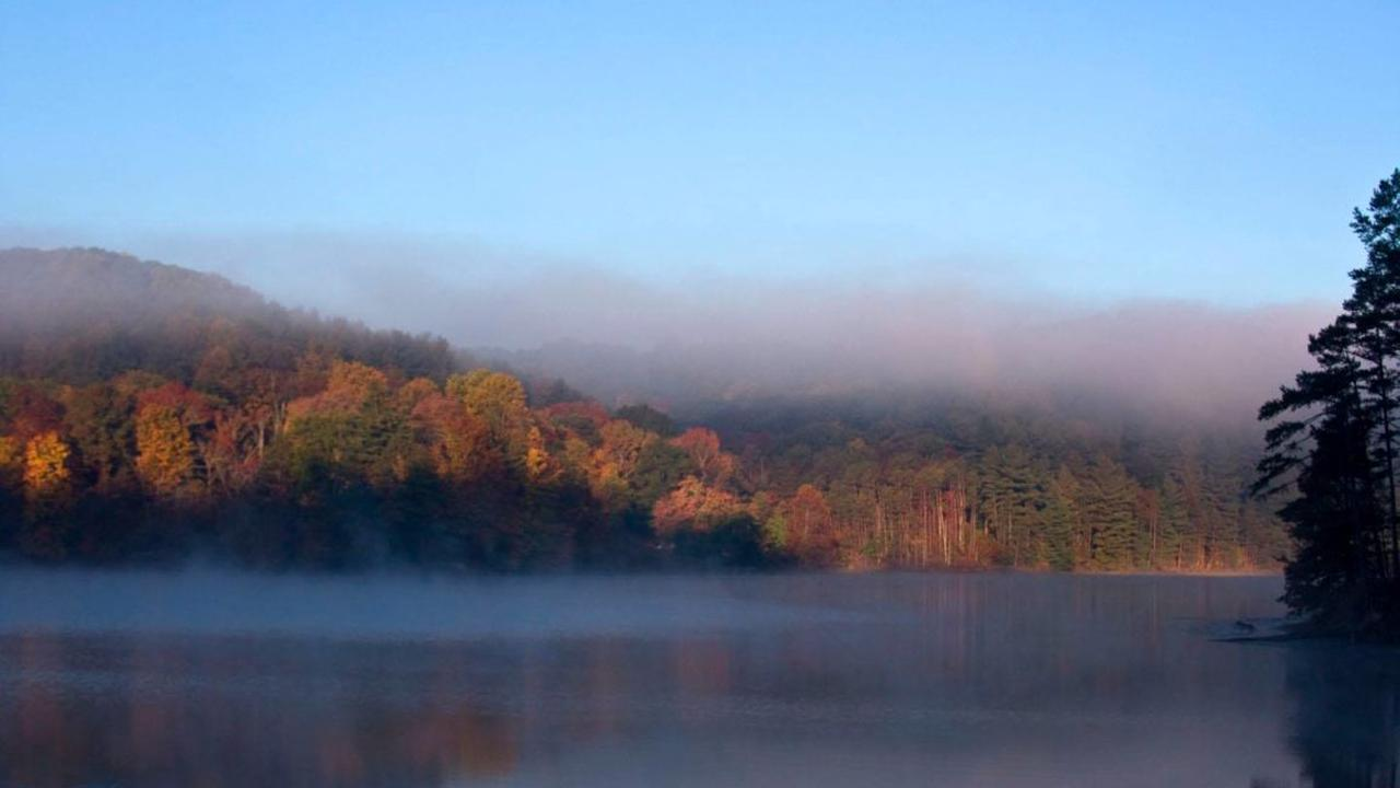 Zaleski State Forest Is An Underrated Gem. Here's Your Guide To Hiking It