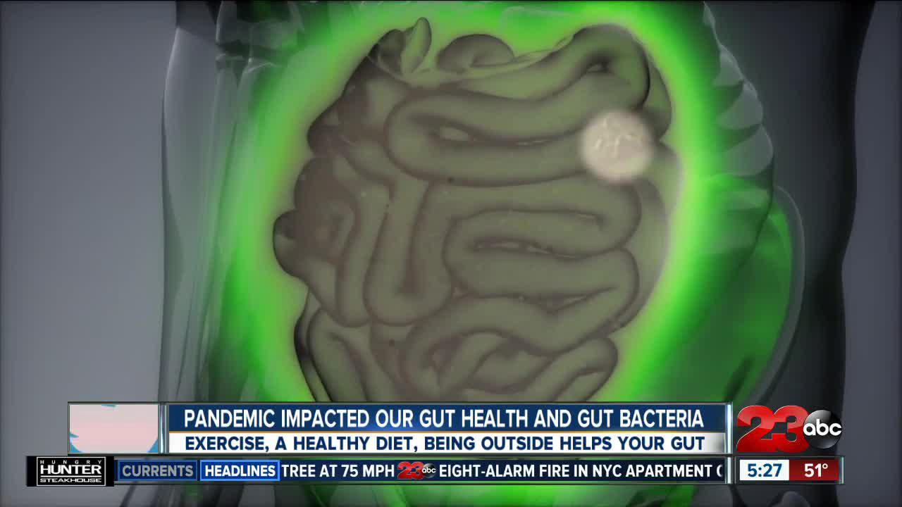 Pandemic impacted our gut health and gut bacteria, Exercise, a healthy diet, being outside helps your gut