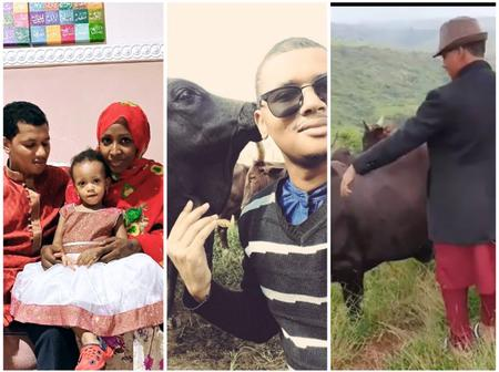 Meet Proud Fulani Herder Who Has 2 Degrees and A Top Staff Of Dangote Group, See Photos Of His Cows