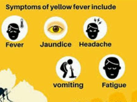 Panic as the number of Yellow Fever deaths passes 70 in Nigeria