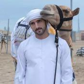 Meet The Dubai Prince Living A Very Rich Lifestyle, He Bought A Camel Worth About 900Million Naira