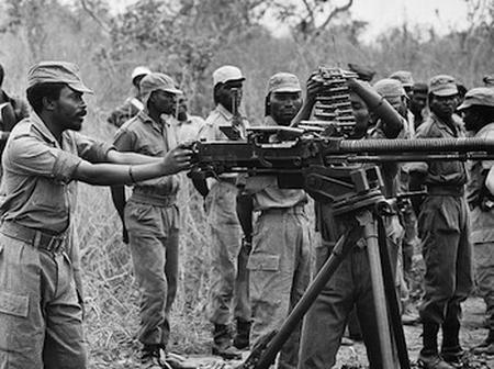 Do you know about the first Civil War in Africa? Check out.