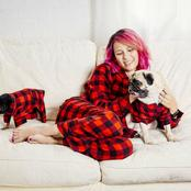 10 Types of Dogs to Buy for Your Girlfriend As A Romantic Gift And Make Her Love You Even More