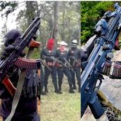 Open Letter To All ESN Operatives To Surrender Their 'Ak-47' Riffles Over The New Order From FG