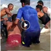 See The Brave Action These Fishermen Took After They Spotted A Giant Shark Whale On The Seashore