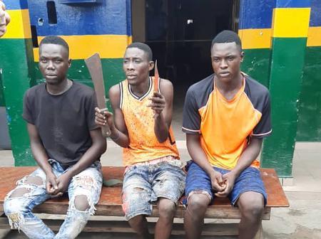 Jungle Justice :Police Arrests 3 Community Leaders For Murder, Vow To Halt Jungle Justice In Lagos