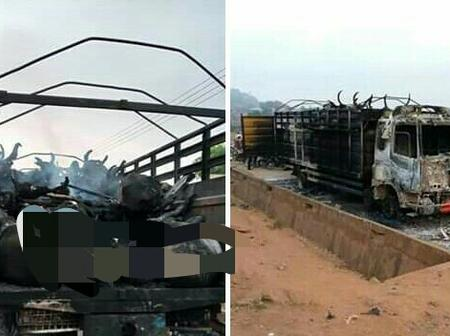 See What Angry Youths Did To A Trailer Carrying Cows In Oyo State