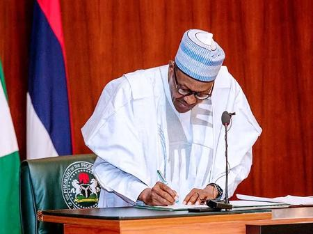 Mixed Reactions As President Buhari Appoints Another Northerner As New IGP