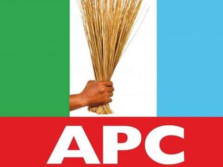 Meet The Top 4 Politicians That May Emerge as the 2023 APC Presidential Candidate (See Their Names)