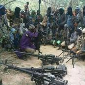 Bandits return to Kagara, scores kidnapped, four others killed