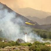 Cape winelands firefighters attend to fire just outside Feanschhoek