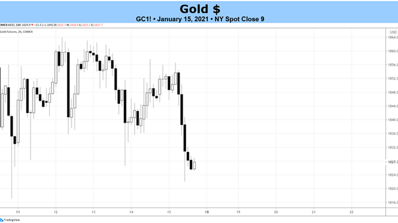 price of Gold Fundamental Daily Forecast