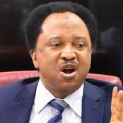 Read Shehu Sani's Advice To The Governors Planning To Become The President Of Nigeria