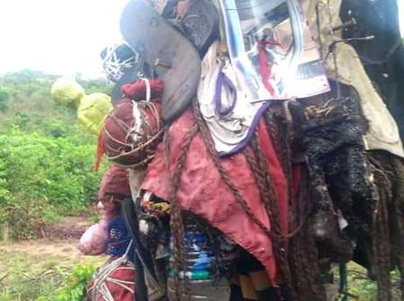 Shrine Discovered Inside Ohafia Forest  With Pictures, Clothing Nailed To A Tree