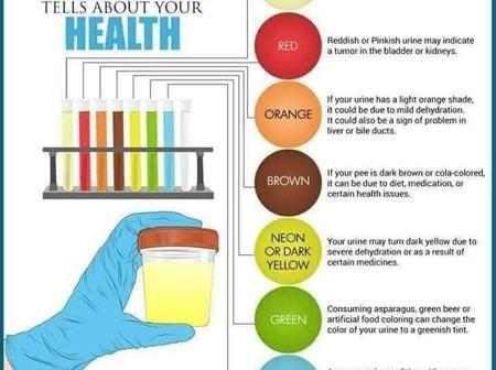Your Urine colour speaks more about your health.