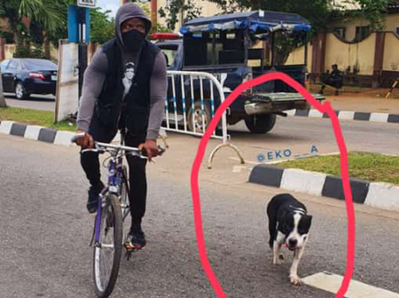 Check Out What This Boy Took To The Endsars Protest That Allegedly Scared Police Officers