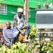 Nandi Man Causes Drama When He Hangs On Tree Next To Transformer To Catch A Glimpse Of DP Ruto