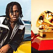 Opinion: See Why FireBoy Might Win A Grammy Award Ahead Of Davido, Wizkid, Burna Boy And Others.