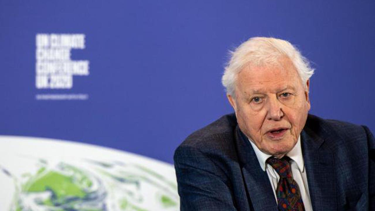 Sir David Attenborough warns of 'crippling' climate change after Cop26 role