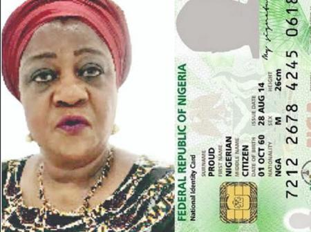 NIN: I Came From Disapora And Got Mine In 2019. Why Wait For Last Minute To Act? - Lauretta Onochie