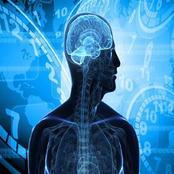 الساعة البيولوجية وأثرها علي السلوك الجسدي