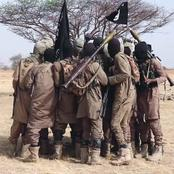 Fear grabs residents as Boko Haram attack Gombe state and Borno states