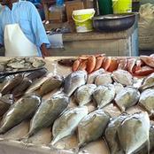لماذا ينُصح بتناول السمك في الشتاء علي الأقل مرتين أسبوعيًا ؟