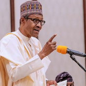 Opinion: If Buhari Arrest These 3 People Immediately, Homosexuality in Nigeria Would Lose Strength