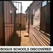 Foreigners Without Matric Have Opened Backyard Schools & Teaching South African Children