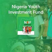 How To Apply For The Nigeria Youth Investment Fund (NYIF) With The Approved Link