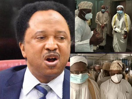 After Obasanjo Met With Gumi, See What Shehu Sani Said About Him That Sparked Reactions (Photos)