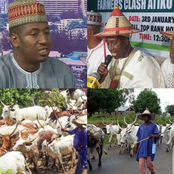 Miyetti Allah Issues Warning, See What They Said Will Happen To Nigeria If Herders Are Radicalized