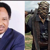 Bandits: After Weeks Of The Kagara Abduction, Shehu Sani Announce The Confirmation Of Their Release