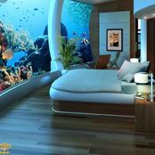 See pictures of Hotel Rooms Under The Sea.