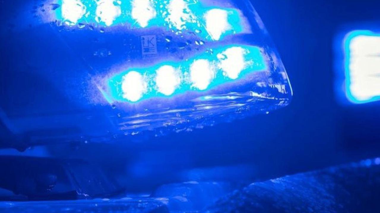 Unfälle: Schulbus fährt gegen Baum: Fünf Verletzte
