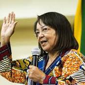 De Lille Set To Point Specialized Condition Evaluation For Beitbridge Fence.