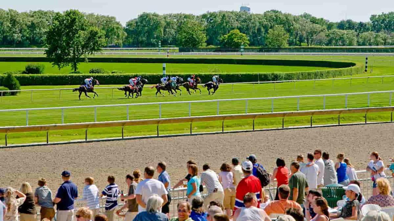 Mister D. Stakes Predictions, Odds & Picks (Arlington Park) - Opera News