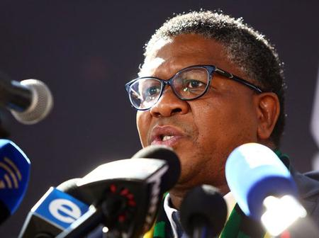 Mbalula's excuse for trip to Zimbabwe: 'SANDF in charge of the skies'